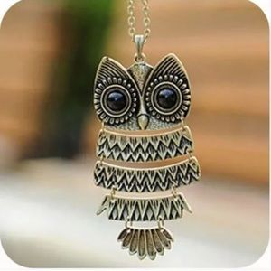 Jewelry - Owl necklace